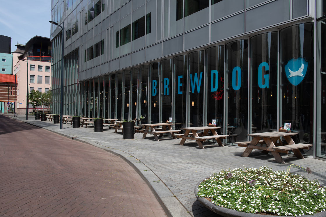 BREWDOG LANDS IN THE NETHERLANDS