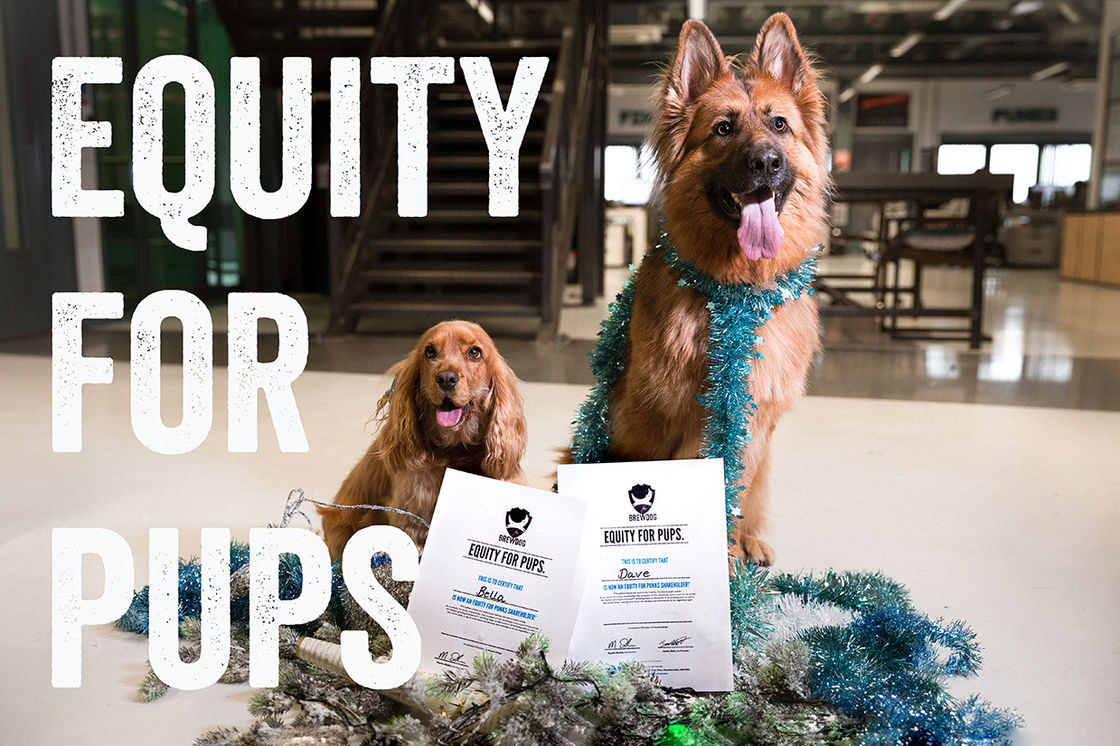EQUITY FOR PUPS