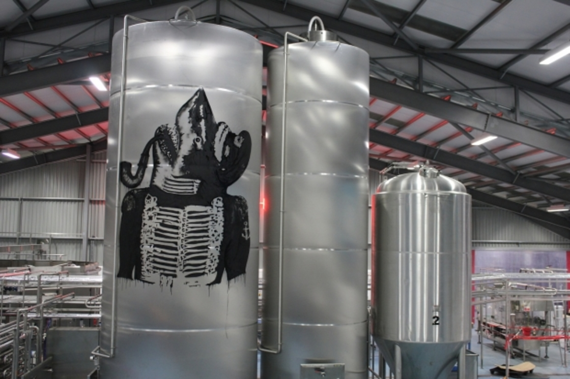 Brew-House Confidential: What is in our tanks