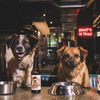 More views of Subwoofer IPA - Craft Beer for Dogs