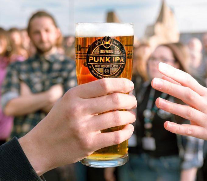 Punk IPA 48 x blikken