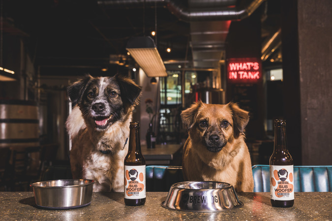 BrewDog SubWoofer Image, Two Dogs drinking Dog Beer